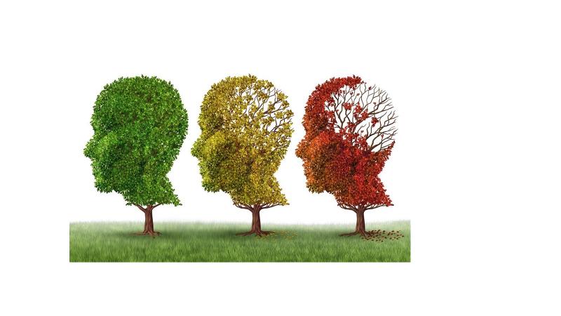 علت بروز و پیدایش آلزایمر